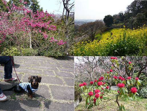金沢動物園②.JPG